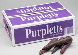 10kg Purple